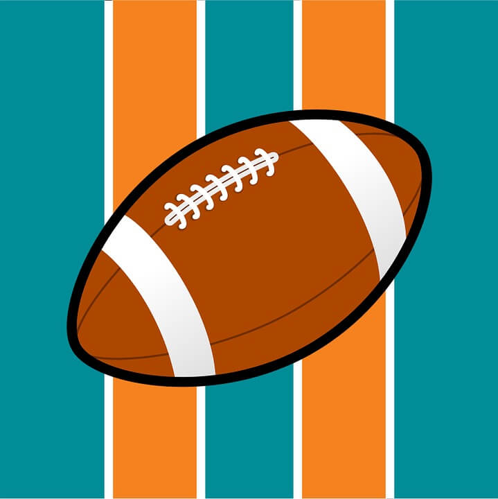 The Miami Dolphins Fiasco - A Case Study on Harassment and Bullying At Work